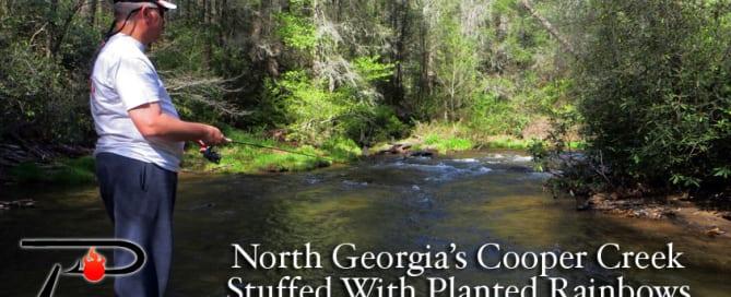 Georgias-Cooper-Creek-blog