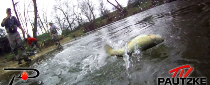 trout-hooked-up-and-jumping
