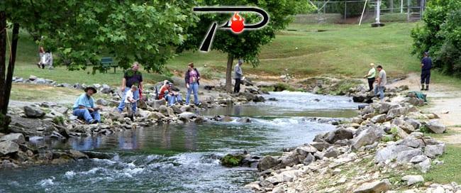 Hatchery-Creek-Blog