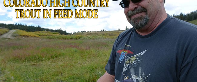 Rockies-Trout-Blog