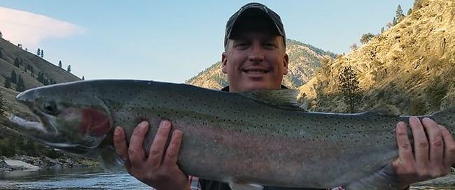 Salmon-Steelhead-Blog