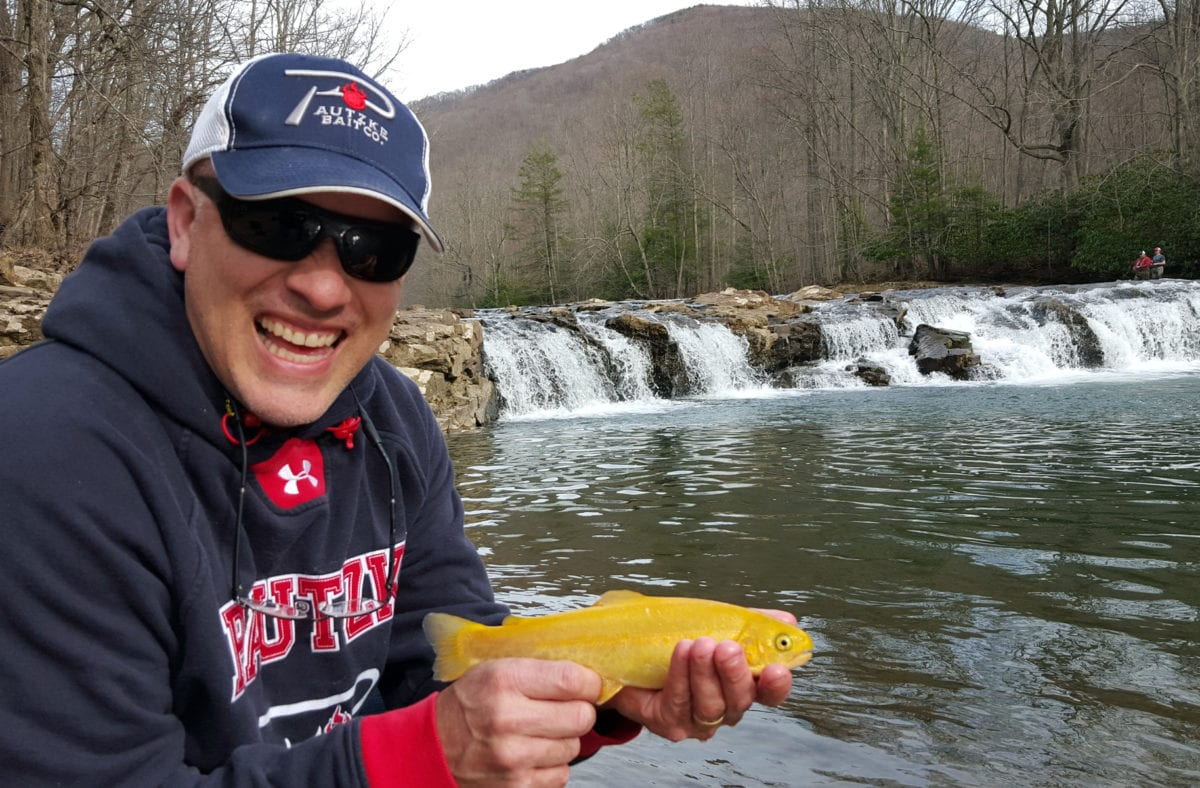West virginia s elk river stocked weekly with trout for Colorado fish stocking