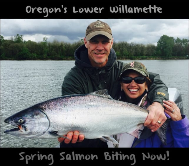 Oregon s lower willamette spring chinook biting now for Are fish biting today