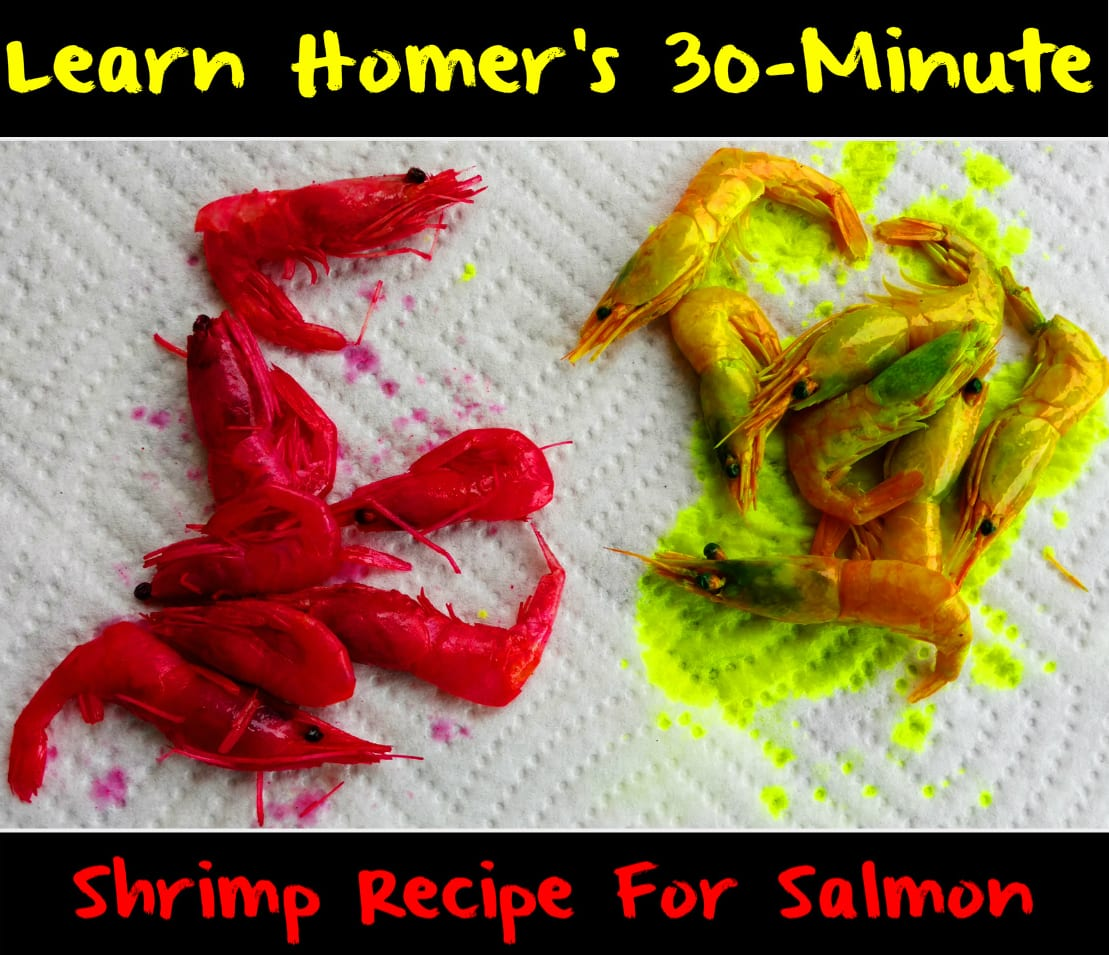 Homers30minuteshrimp
