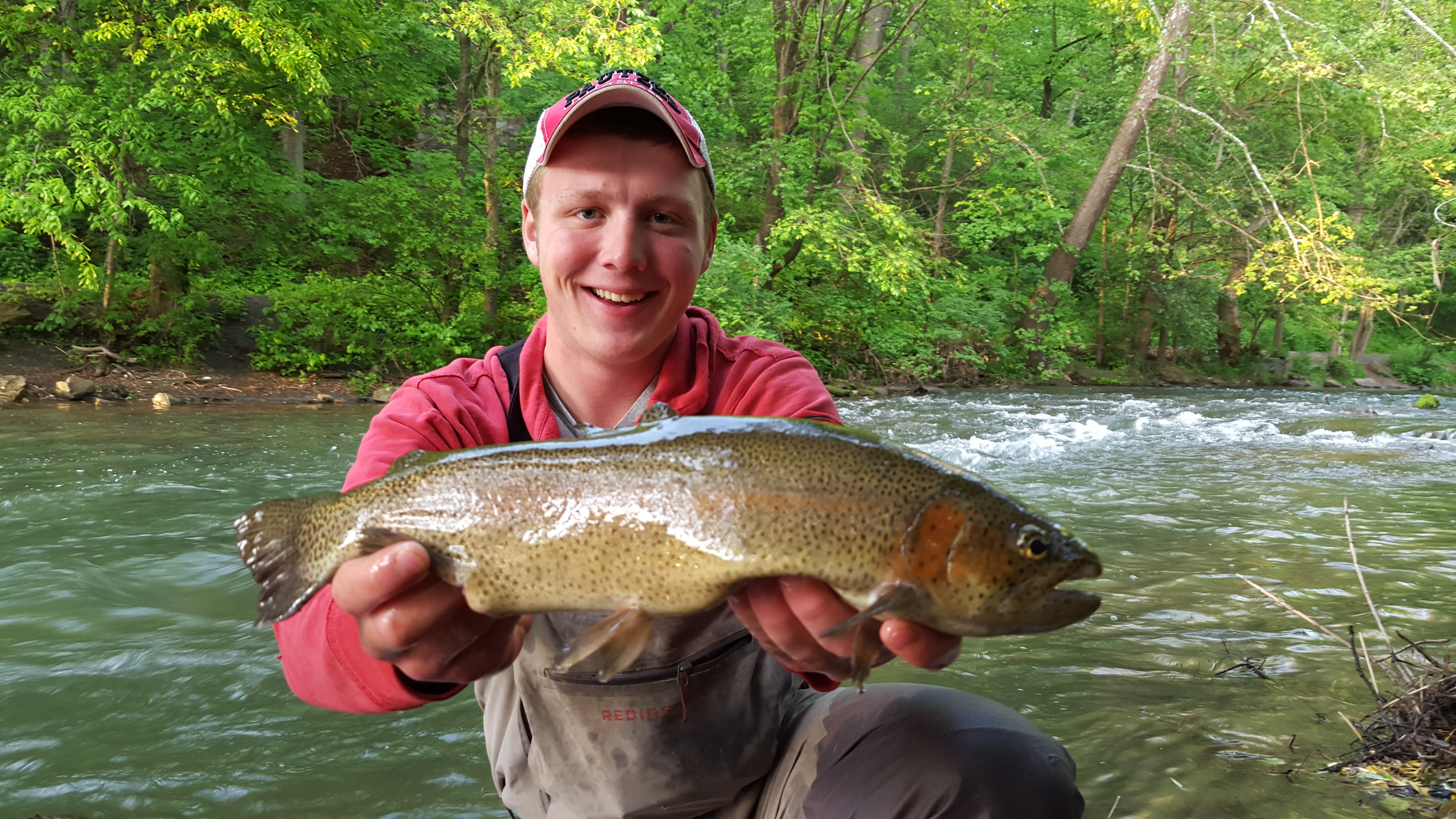 Pa s little lehigh creek still supporting plenty of trout for Pa fish stocking