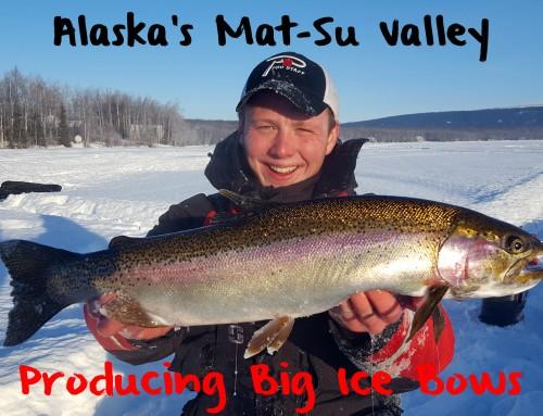 Alaska's Mat-Su Valley Producing Big Ice Bows