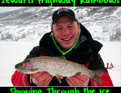 Seward Highway Rainbows Showing Through the Ice