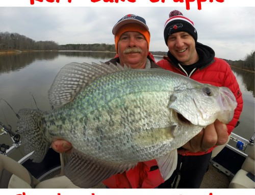 Kerr Lake Crappie Showing in Large Numbers