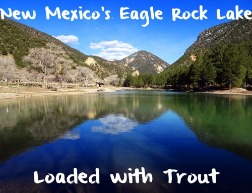 New Mexico's Eagle Rock Lake Loaded with Trout