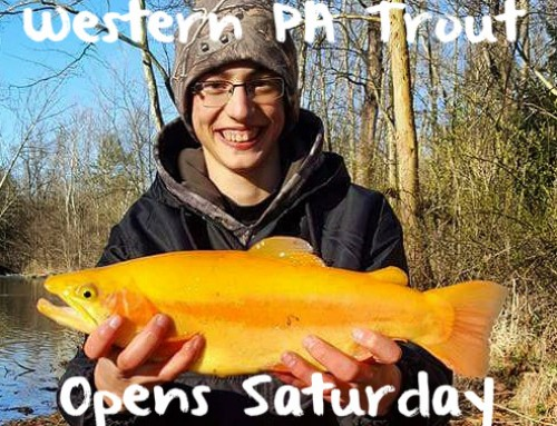 Western PA Trout Opens Saturday