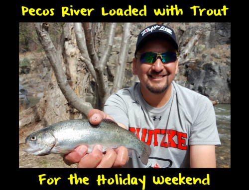Pecos River Loaded with Trout for the Holiday Weekend