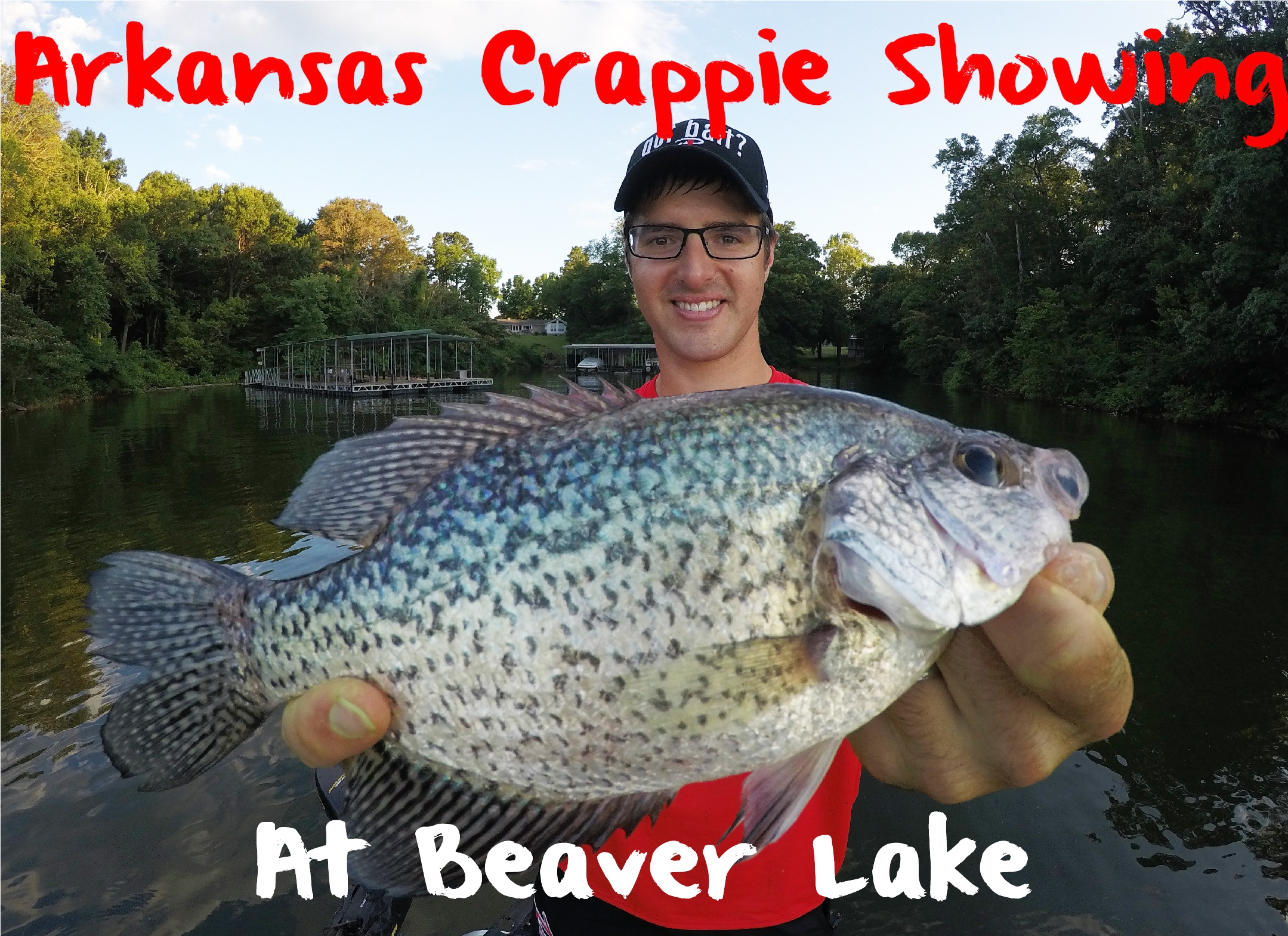 Arkansas crappie showing on beaver lake pautzke bait co for Beaver lake fishing guides