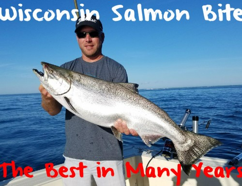 Wisconsin Salmon Fishing: Best in Many Years