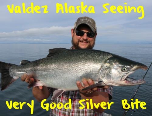 Valdez Alaska Seeing Good Silver Bite