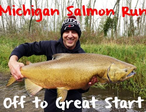 Michigan Salmon Run Off to Great Start