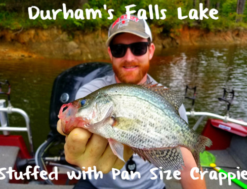 Durham's Falls Lake Stuffed with Pan Size Crappie