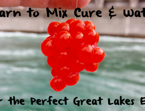 Learn to Mix Cure & Water: For the Perfect Great Lakes Egg