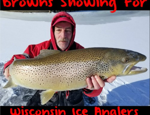 Browns Showing For Wisconsin Ice Anglers