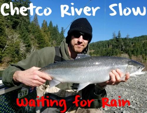 Chetco Steelhead Slow: Waiting for Rain