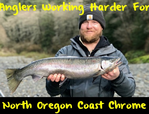 Anglers Working Harder for Chrome on The North Oregon Coast