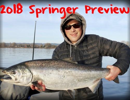 2018 Springer Preview