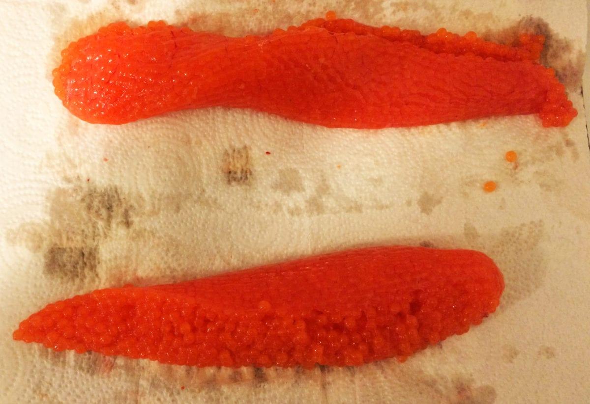 orangecure1
