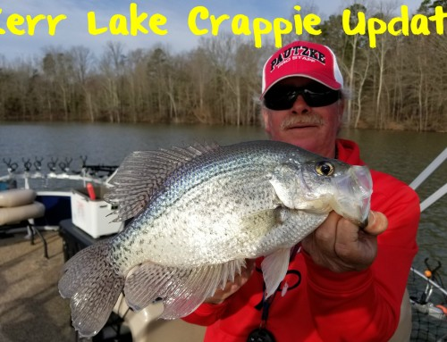 Kerr Lake Crappie Update