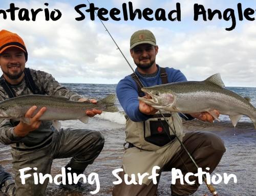 Ontario Steelhead Anglers Finding Surf Fishing Action