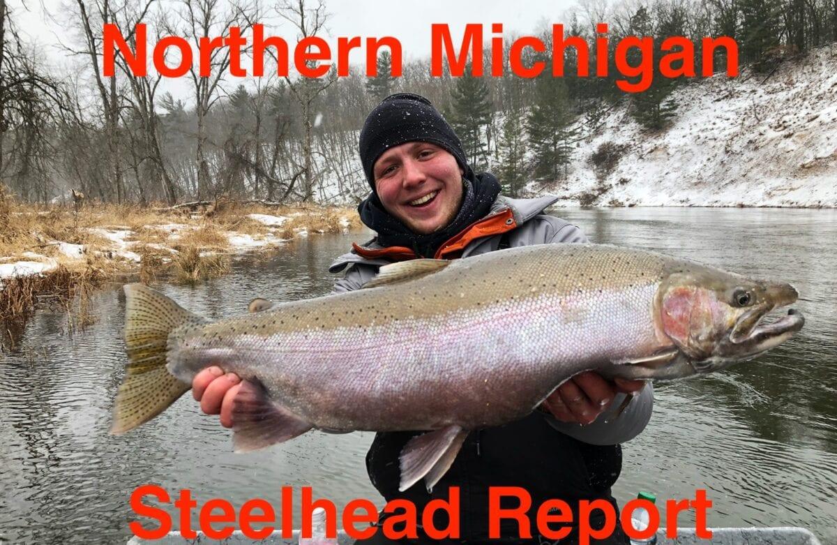 Michigan Steelhead Report – Pautzke Bait Co