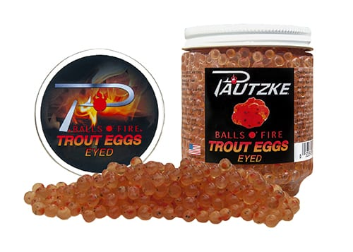 Trout Eggs Eyed