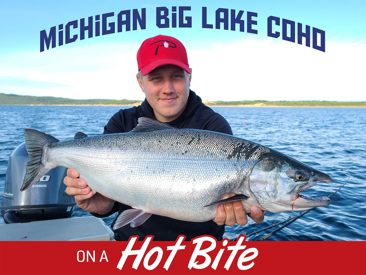MIchigan Lake Trout
