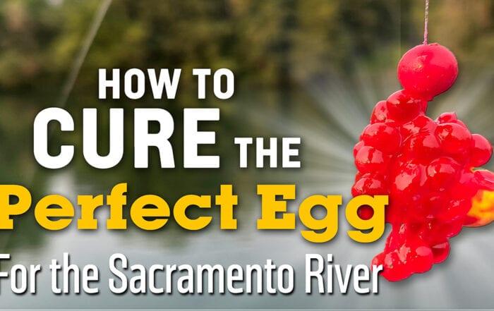 How to cure eggs for Sacramento River