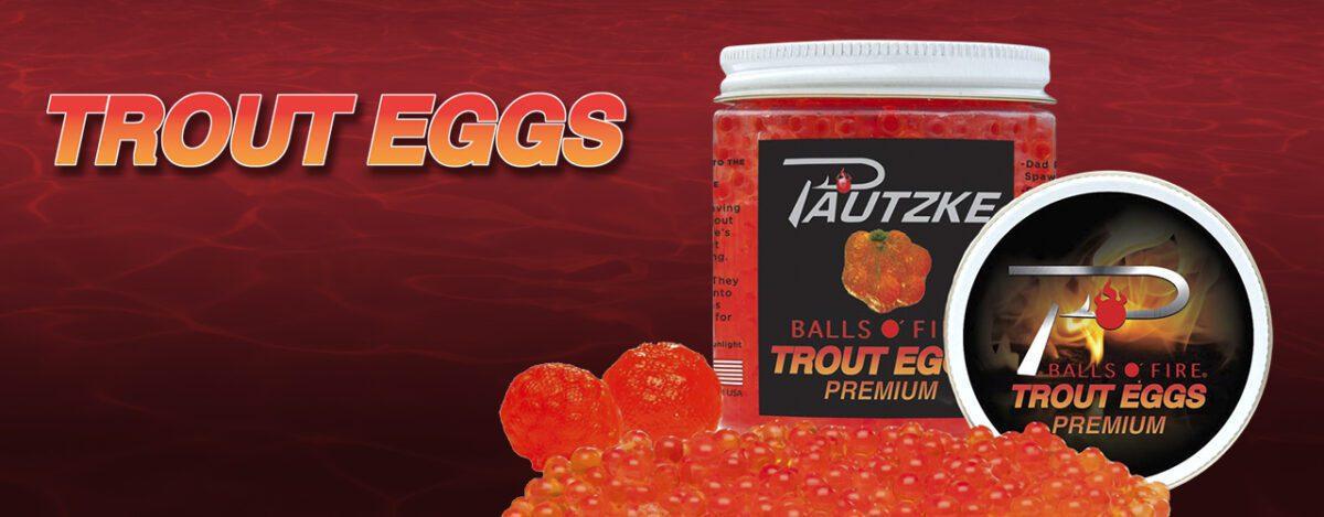 trout eggs